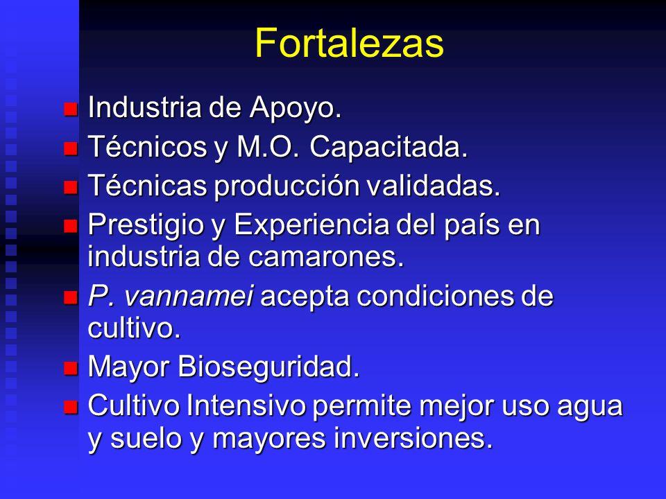 Fortalezas Industria de Apoyo.Industria de Apoyo.