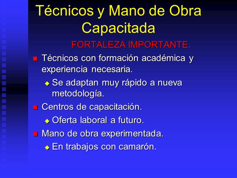 Técnicos y Mano de Obra Capacitada FORTALEZA IMPORTANTE. Técnicos con formación académica y experiencia necesaria. Técnicos con formación académica y