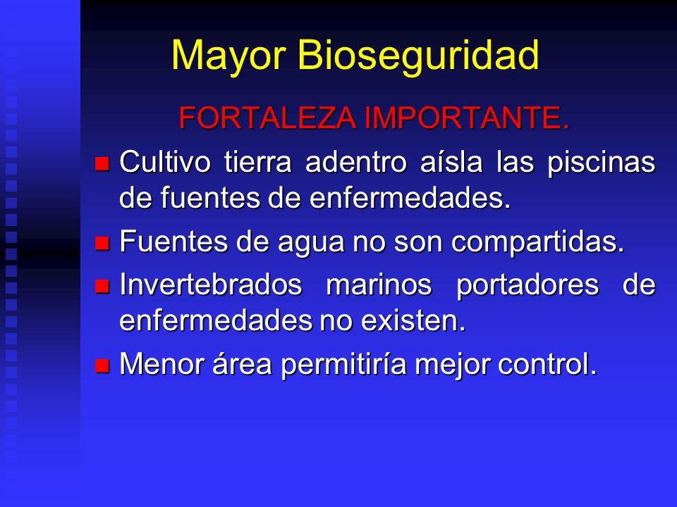 Mayor Bioseguridad FORTALEZA IMPORTANTE. Cultivo tierra adentro aísla las piscinas de fuentes de enfermedades. Cultivo tierra adentro aísla las piscin