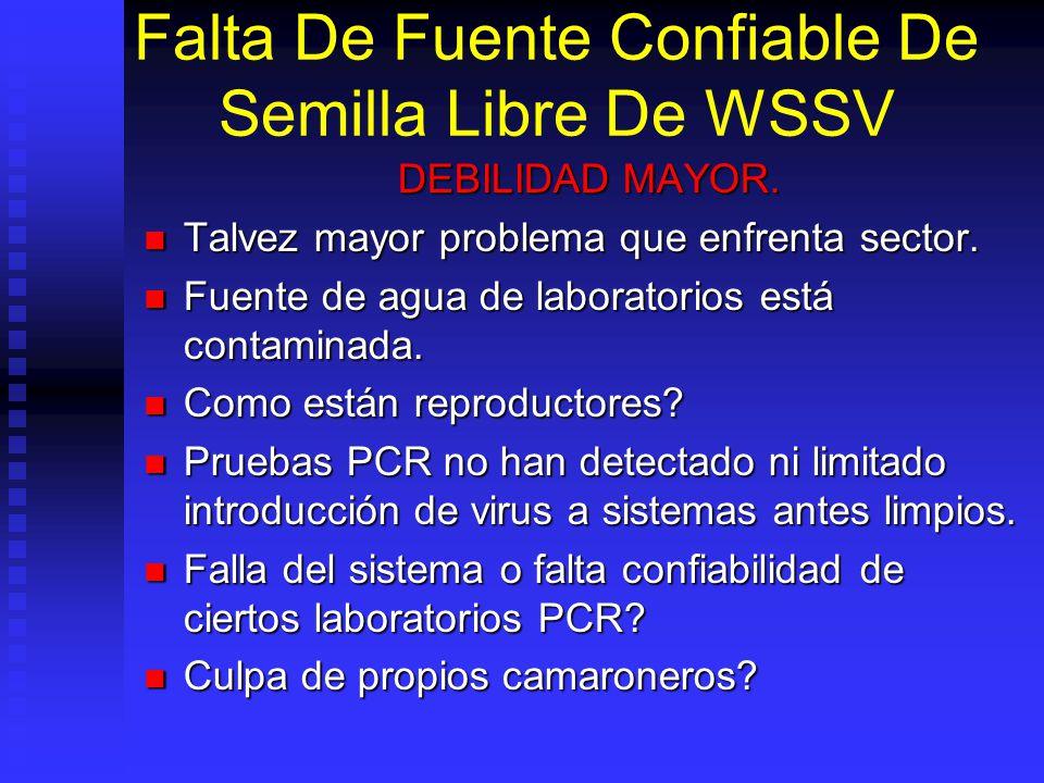 Falta De Fuente Confiable De Semilla Libre De WSSV DEBILIDAD MAYOR.