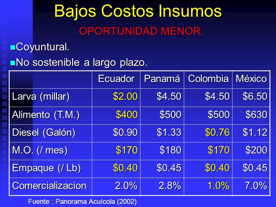 Bajos Costos Insumos EcuadorPanamáColombiaMéxico Larva (millar) $2.00$4.50$4.50$6.50 Alimento (T.M.) $400$500$500$630 Diesel (Galón) $0.90$1.33$0.76$1.12 M.O.