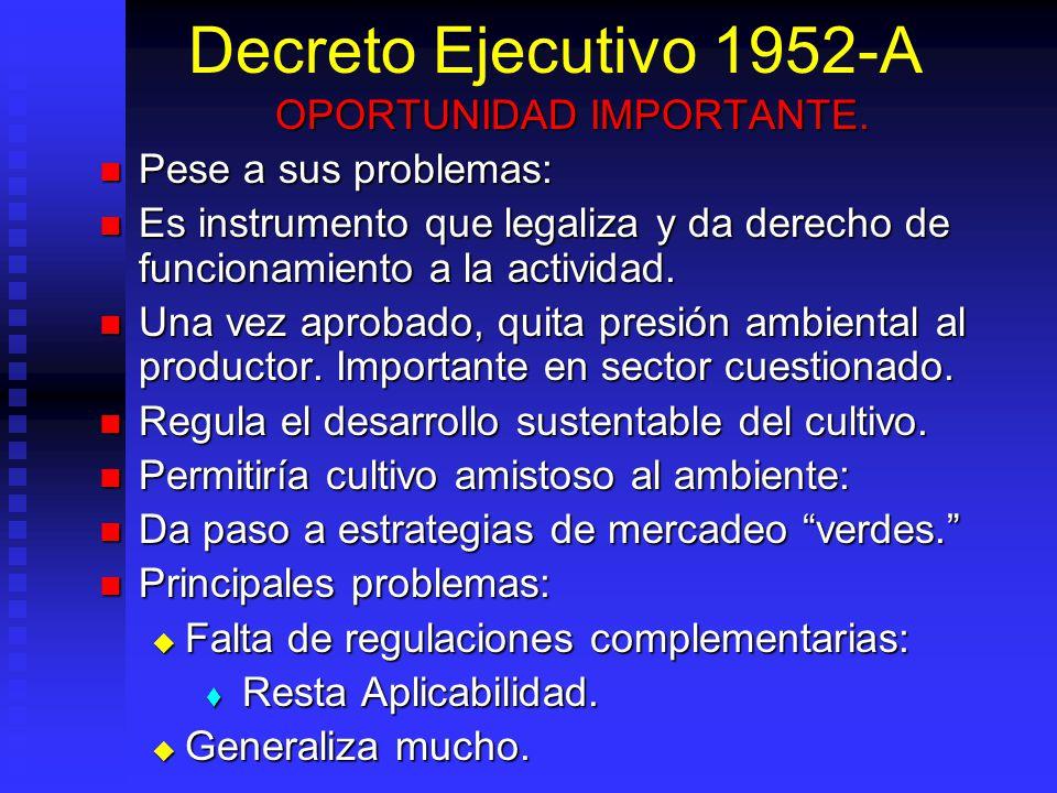 Decreto Ejecutivo 1952-A OPORTUNIDAD IMPORTANTE. Pese a sus problemas: Pese a sus problemas: Es instrumento que legaliza y da derecho de funcionamient