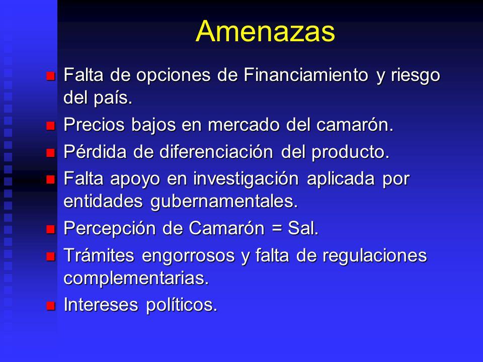Amenazas Falta de opciones de Financiamiento y riesgo del país. Falta de opciones de Financiamiento y riesgo del país. Precios bajos en mercado del ca