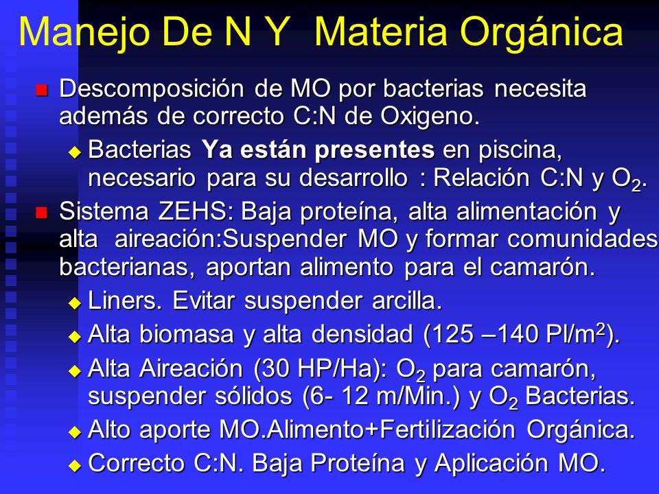 Manejo De N Y Materia Orgánica Descomposición de MO por bacterias necesita además de correcto C:N de Oxigeno.