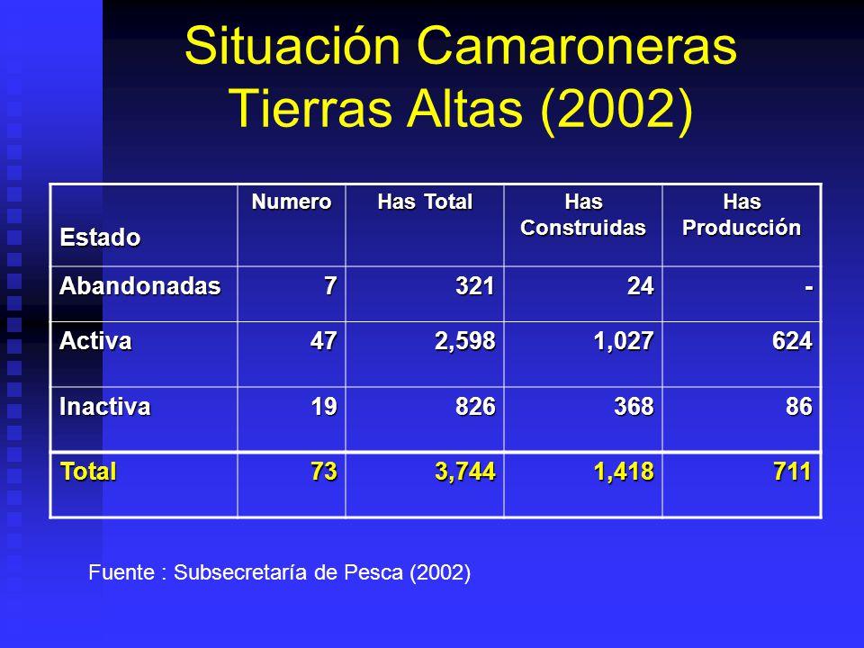 Situación Camaroneras Tierras Altas (2002) EstadoNumero Has Total Has Construidas Has Producción Abandonadas732124- Activa472,5981,027624 Inactiva1982636886 Total733,7441,418711 Fuente : Subsecretaría de Pesca (2002)