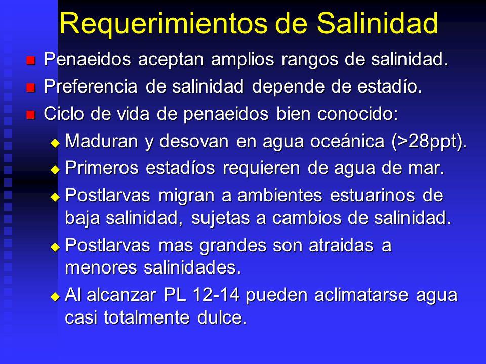 Requerimientos de Salinidad Penaeidos aceptan amplios rangos de salinidad. Penaeidos aceptan amplios rangos de salinidad. Preferencia de salinidad dep