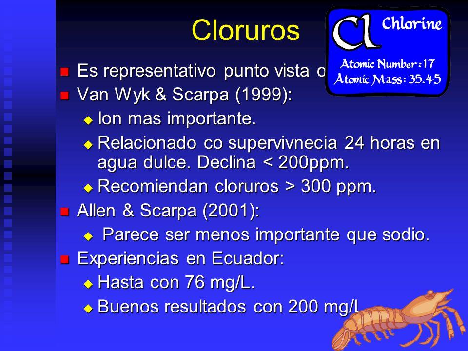 Cloruros Es representativo punto vista oceanografico Es representativo punto vista oceanografico Van Wyk & Scarpa (1999): Van Wyk & Scarpa (1999): Ion mas importante.