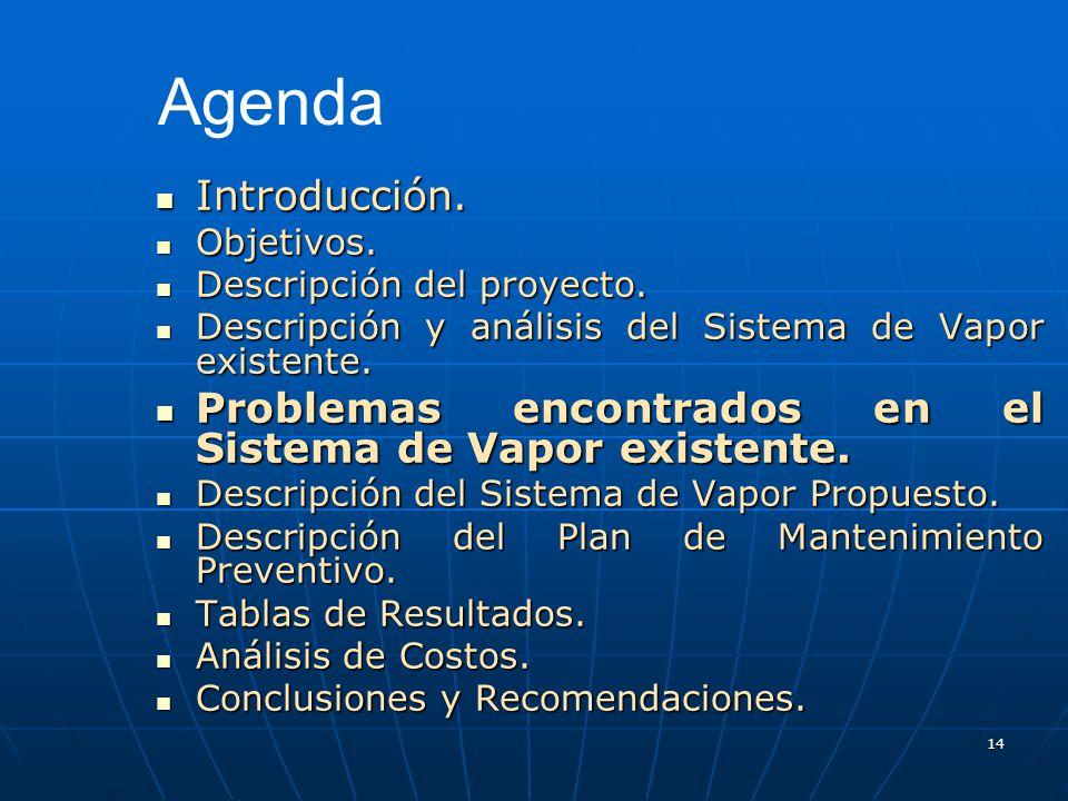 14 Introducción. Introducción. Objetivos. Objetivos. Descripción del proyecto. Descripción del proyecto. Descripción y análisis del Sistema de Vapor e