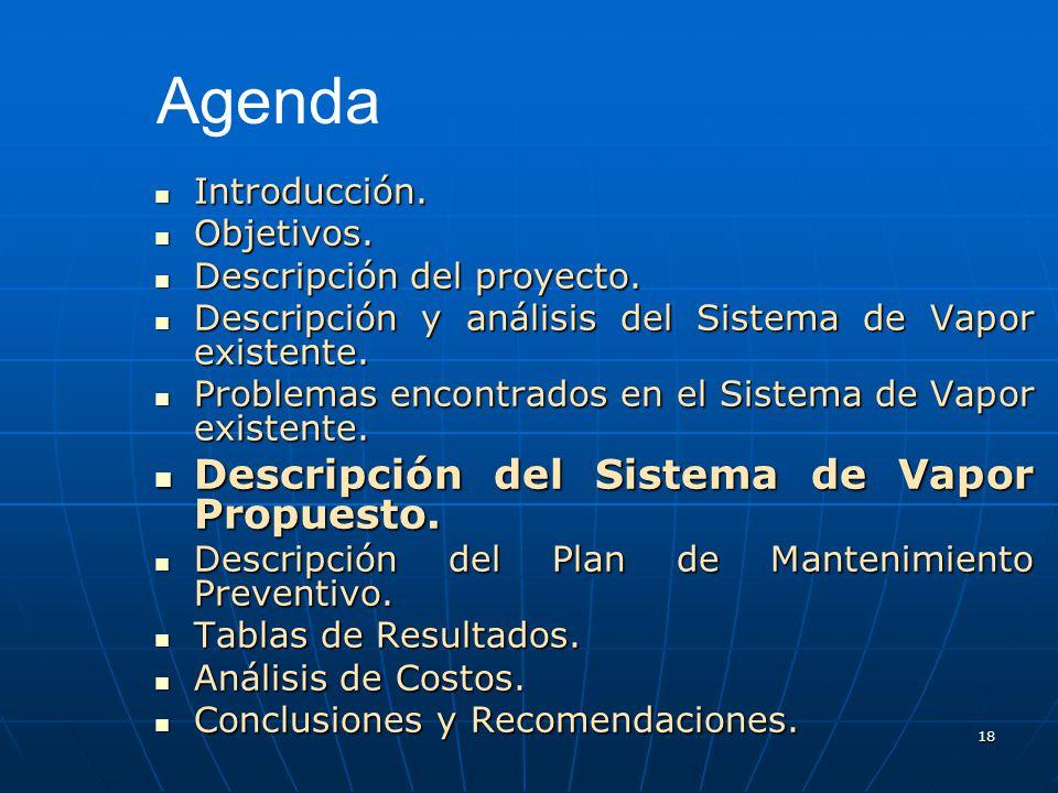 18 Introducción. Introducción. Objetivos. Objetivos. Descripción del proyecto. Descripción del proyecto. Descripción y análisis del Sistema de Vapor e