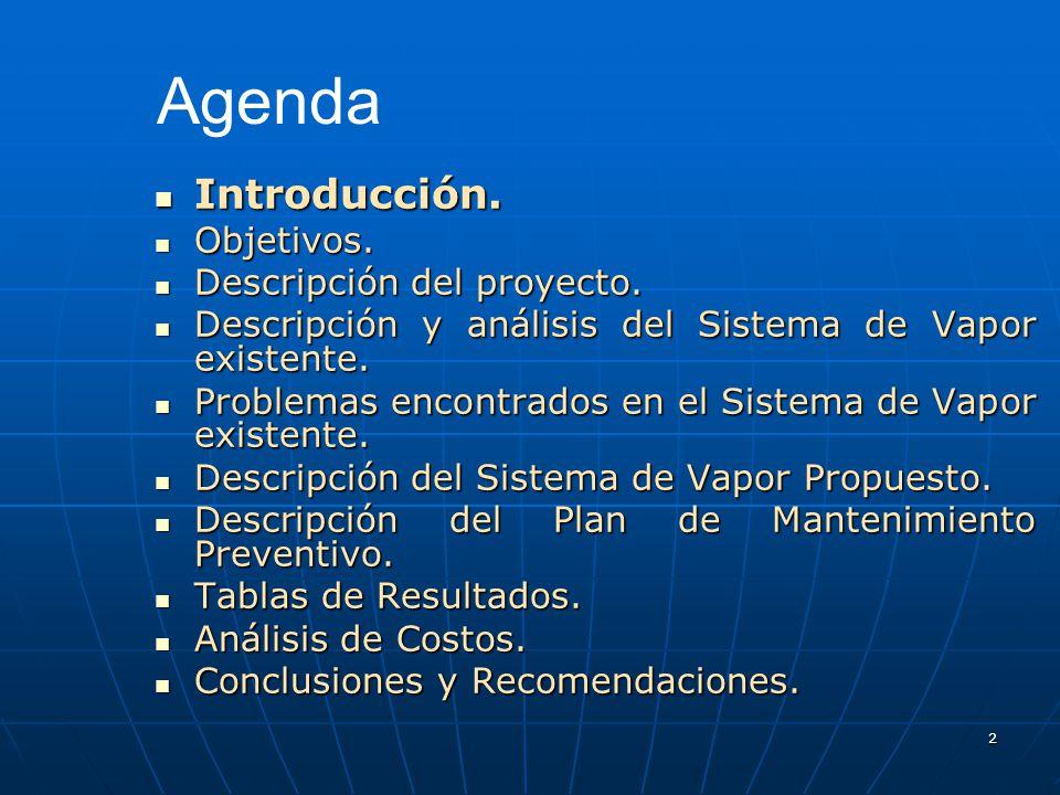 2 Introducción. Introducción. Objetivos. Objetivos. Descripción del proyecto. Descripción del proyecto. Descripción y análisis del Sistema de Vapor ex