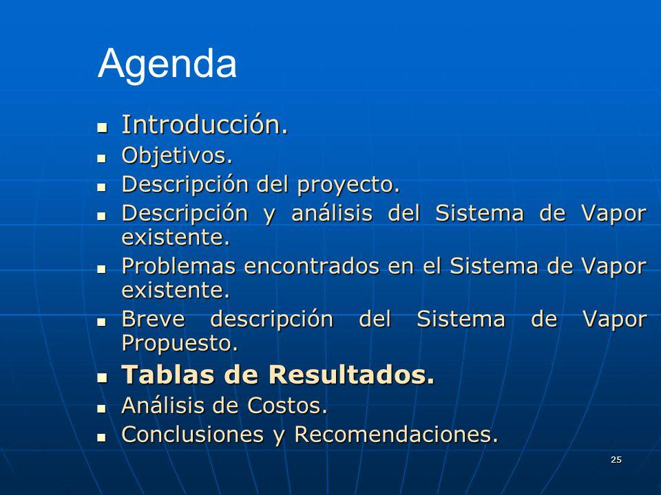 25 Introducción. Introducción. Objetivos. Objetivos. Descripción del proyecto. Descripción del proyecto. Descripción y análisis del Sistema de Vapor e