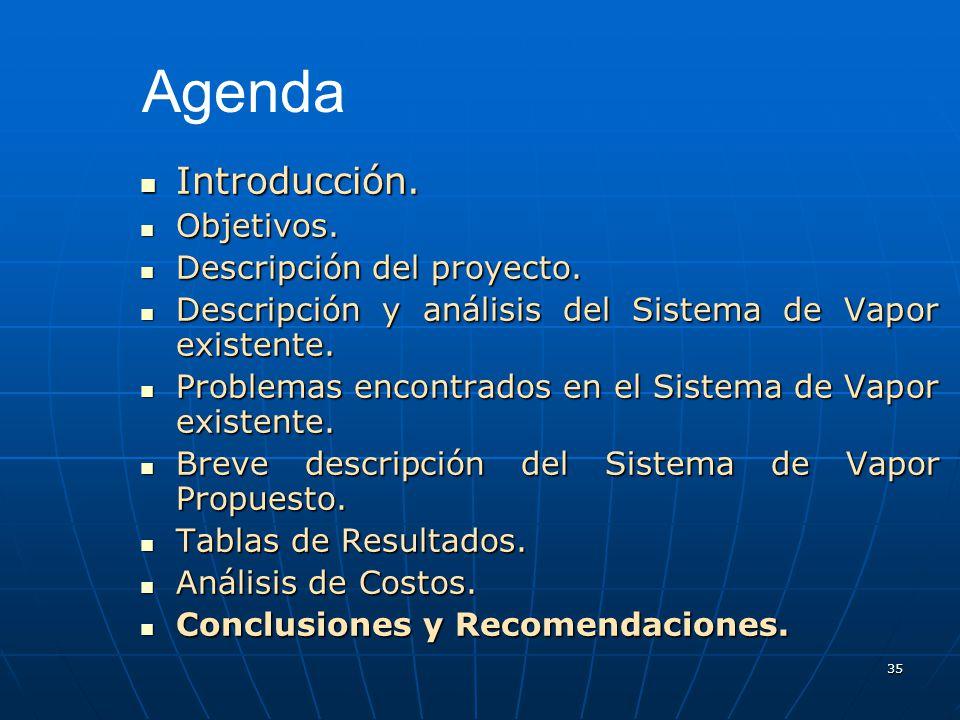 35 Introducción. Introducción. Objetivos. Objetivos. Descripción del proyecto. Descripción del proyecto. Descripción y análisis del Sistema de Vapor e