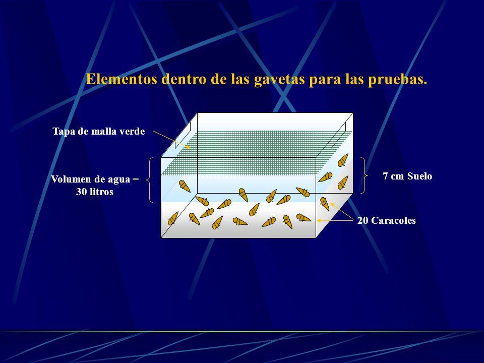 7 cm Suelo Volumen de agua = 30 litros Elementos dentro de las gavetas para las pruebas.