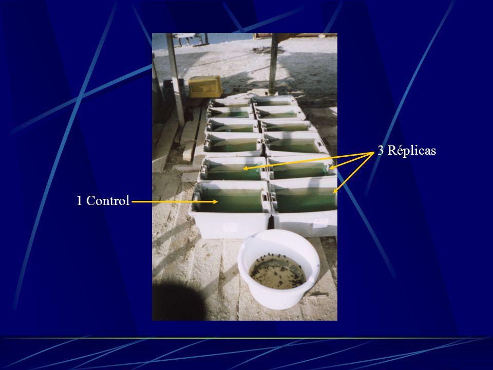 Tabla de cálculos para los tratamientos con Sulfato de Cobre.