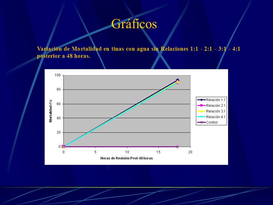 Variación de Mortalidad en tinas con agua sin Relaciones 1:1 - 2:1 - 3:1 - 4:1 posterior a 48 horas.