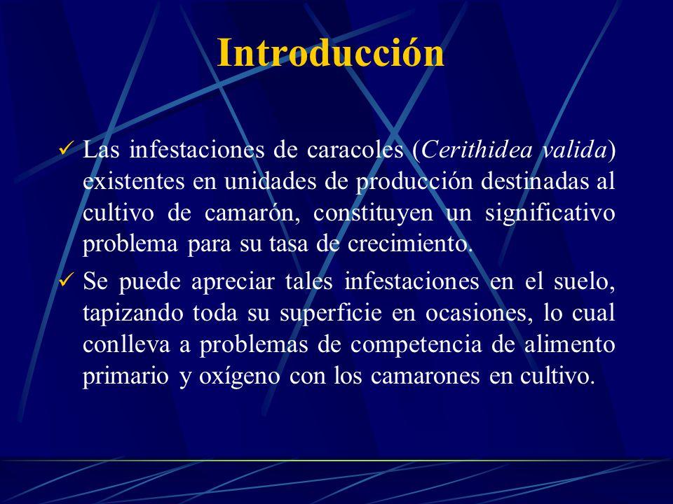 Introducción Las infestaciones de caracoles (Cerithidea valida) existentes en unidades de producción destinadas al cultivo de camarón, constituyen un significativo problema para su tasa de crecimiento.