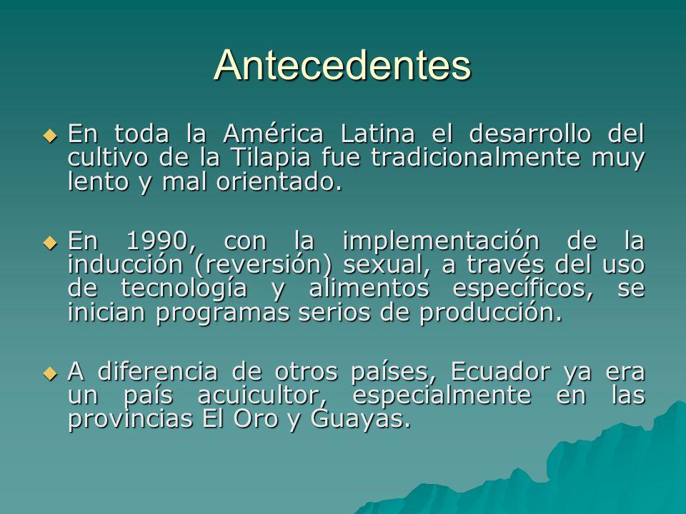Antecedentes En toda la América Latina el desarrollo del cultivo de la Tilapia fue tradicionalmente muy lento y mal orientado. En toda la América Lati