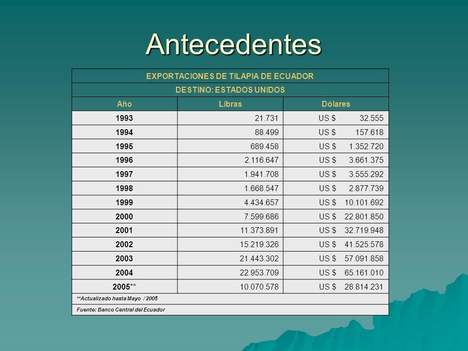 Antecedentes EXPORTACIONES DE TILAPIA DE ECUADOR DESTINO: ESTADOS UNIDOS AñoLibrasDólares 199321.731US $ 32.555 199488.499US $ 157.618 1995689.458US $