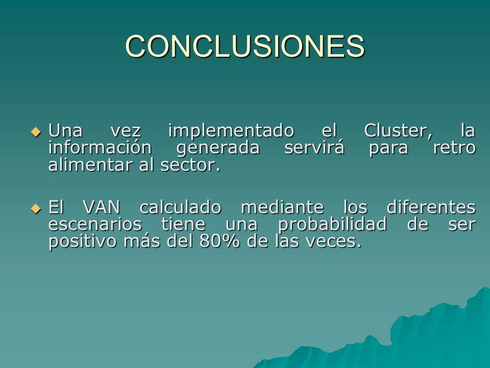 CONCLUSIONES Una vez implementado el Cluster, la información generada servirá para retro alimentar al sector. Una vez implementado el Cluster, la info