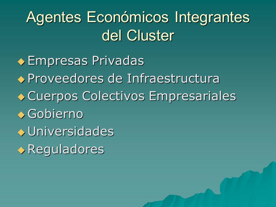 Agentes Económicos Integrantes del Cluster Empresas Privadas Empresas Privadas Proveedores de Infraestructura Proveedores de Infraestructura Cuerpos C
