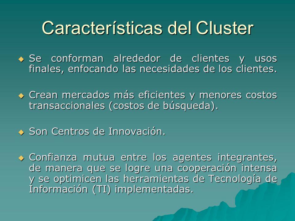 Características del Cluster Se conforman alrededor de clientes y usos finales, enfocando las necesidades de los clientes. Se conforman alrededor de cl