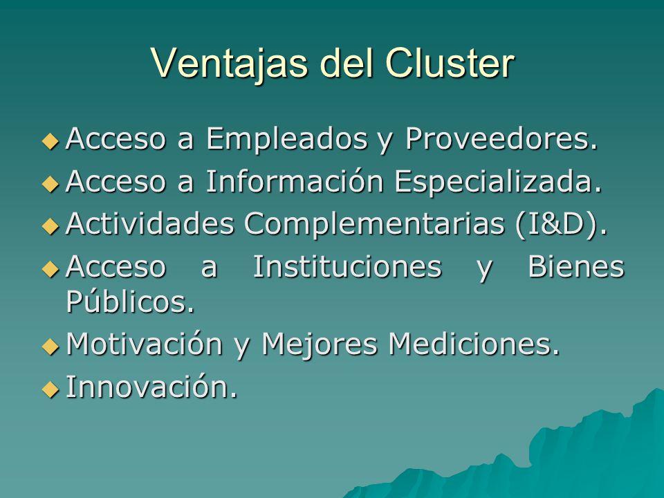 Ventajas del Cluster Acceso a Empleados y Proveedores. Acceso a Empleados y Proveedores. Acceso a Información Especializada. Acceso a Información Espe