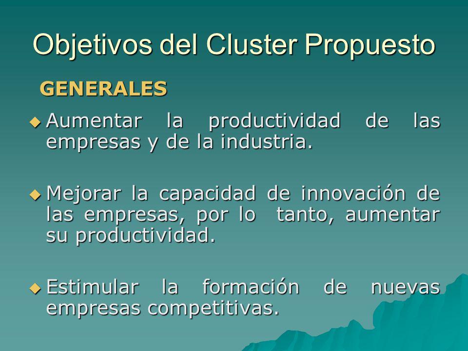Objetivos del Cluster Propuesto Aumentar la productividad de las empresas y de la industria. Aumentar la productividad de las empresas y de la industr
