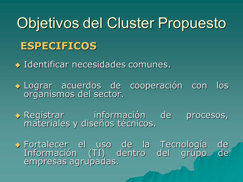 Objetivos del Cluster Propuesto Identificar necesidades comunes. Identificar necesidades comunes. Lograr acuerdos de cooperación con los organismos de