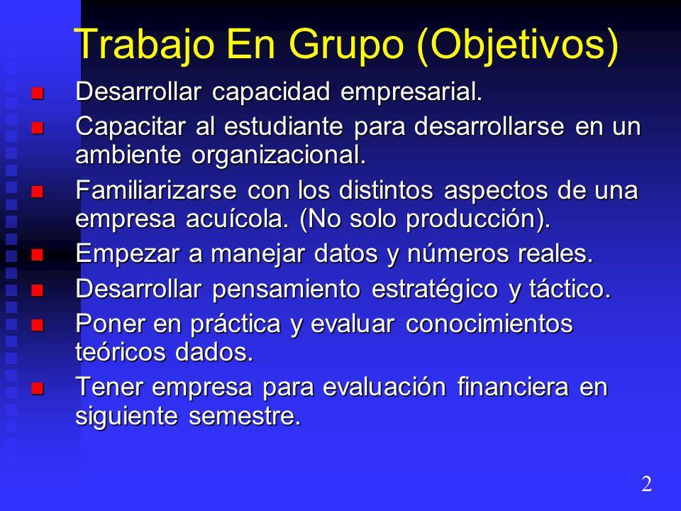 Trabajo En Grupo (Objetivos) Desarrollar capacidad empresarial. Desarrollar capacidad empresarial. Capacitar al estudiante para desarrollarse en un am