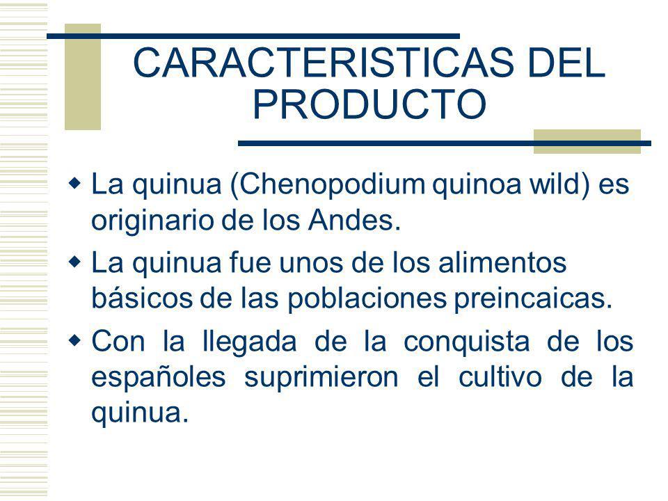 CARACTERISTICAS DEL PRODUCTO La quinua (Chenopodium quinoa wild) es originario de los Andes. La quinua fue unos de los alimentos básicos de las poblac