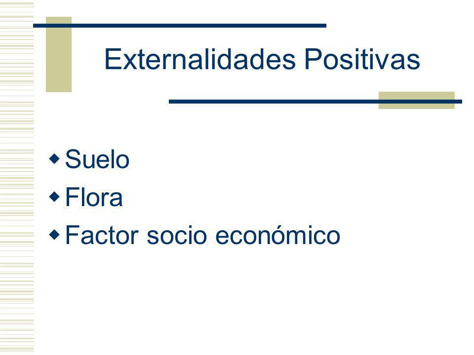 Externalidades Positivas Suelo Flora Factor socio económico