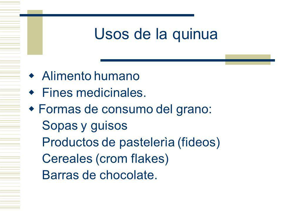 Usos de la quinua Alimento humano Fines medicinales. Formas de consumo del grano: Sopas y guisos Productos de pastelerìa (fideos) Cereales (crom flake