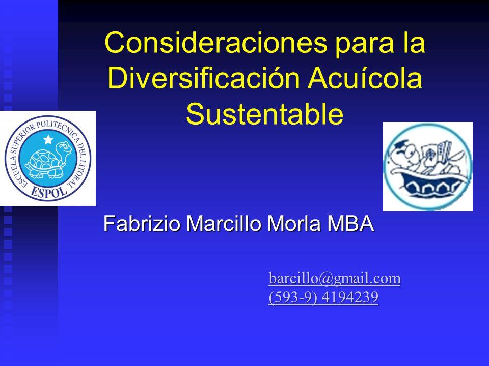 Consideraciones para la Diversificación Acuícola Sustentable Fabrizio Marcillo Morla MBA barcillo@gmail.com (593-9) 4194239 (593-9) 4194239