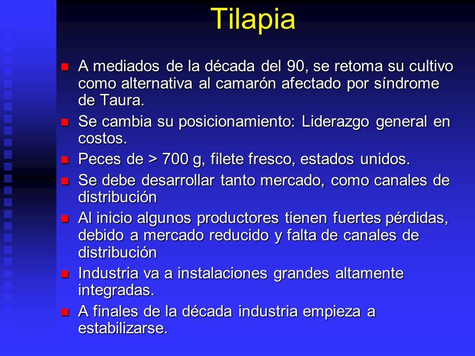 Tilapia A mediados de la década del 90, se retoma su cultivo como alternativa al camarón afectado por síndrome de Taura. A mediados de la década del 9