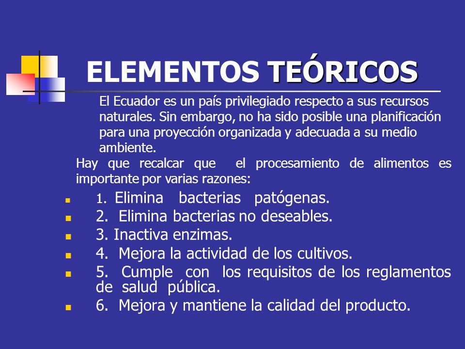 TEÓRICOS ELEMENTOS TEÓRICOS 1. Elimina bacterias patógenas. 2. Elimina bacterias no deseables. 3. Inactiva enzimas. 4. Mejora la actividad de los cult