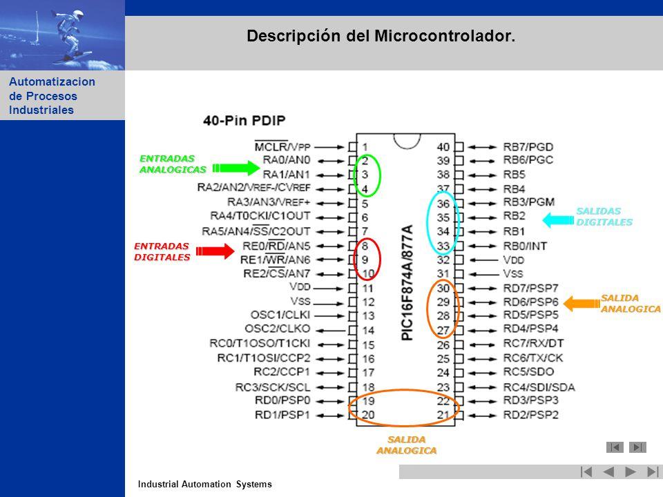 Industrial Automation Systems Automatizacion de Procesos Industriales Descripción del Microcontrolador. ENTRADASDIGITALES ENTRADASANALOGICAS SALIDASDI