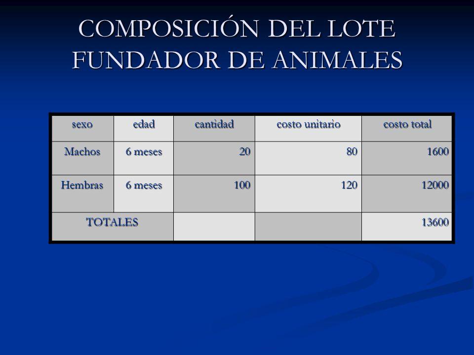 COMPOSICIÓN DEL LOTE FUNDADOR DE ANIMALES sexoedadcantidad costo unitario costo total Machos 6 meses 20801600 Hembras 10012012000 TOTALES 13600