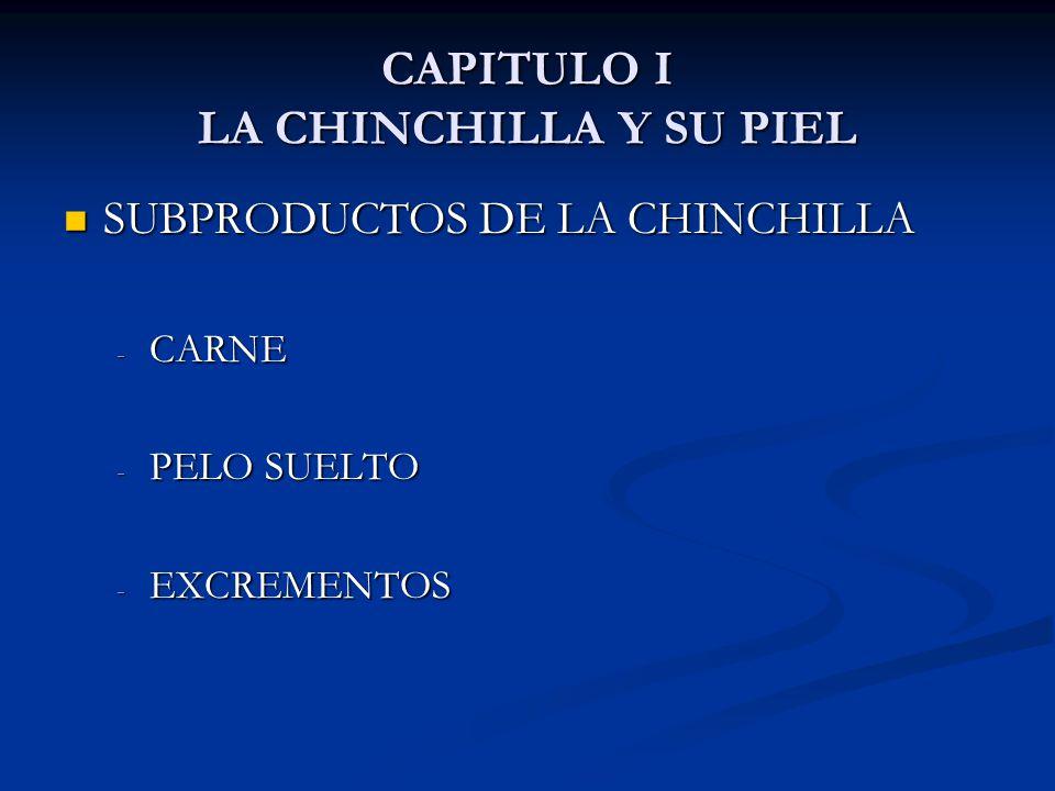 CAPITULO I LA CHINCHILLA Y SU PIEL SUBPRODUCTOS DE LA CHINCHILLA SUBPRODUCTOS DE LA CHINCHILLA - CARNE - PELO SUELTO - EXCREMENTOS