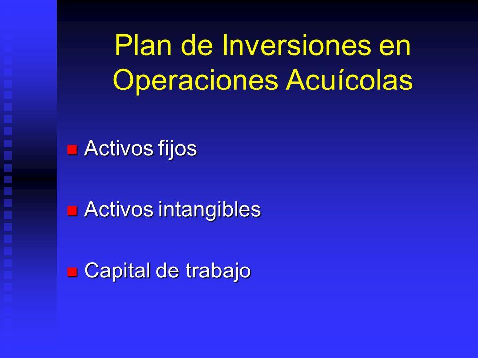 Plan de Inversiones en Operaciones Acuícolas Activos fijos Activos fijos Activos intangibles Activos intangibles Capital de trabajo Capital de trabajo