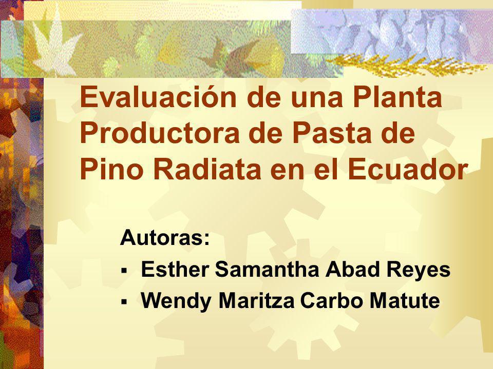 Evaluación de una Planta Productora de Pasta de Pino Radiata en el Ecuador Autoras: Esther Samantha Abad Reyes Wendy Maritza Carbo Matute
