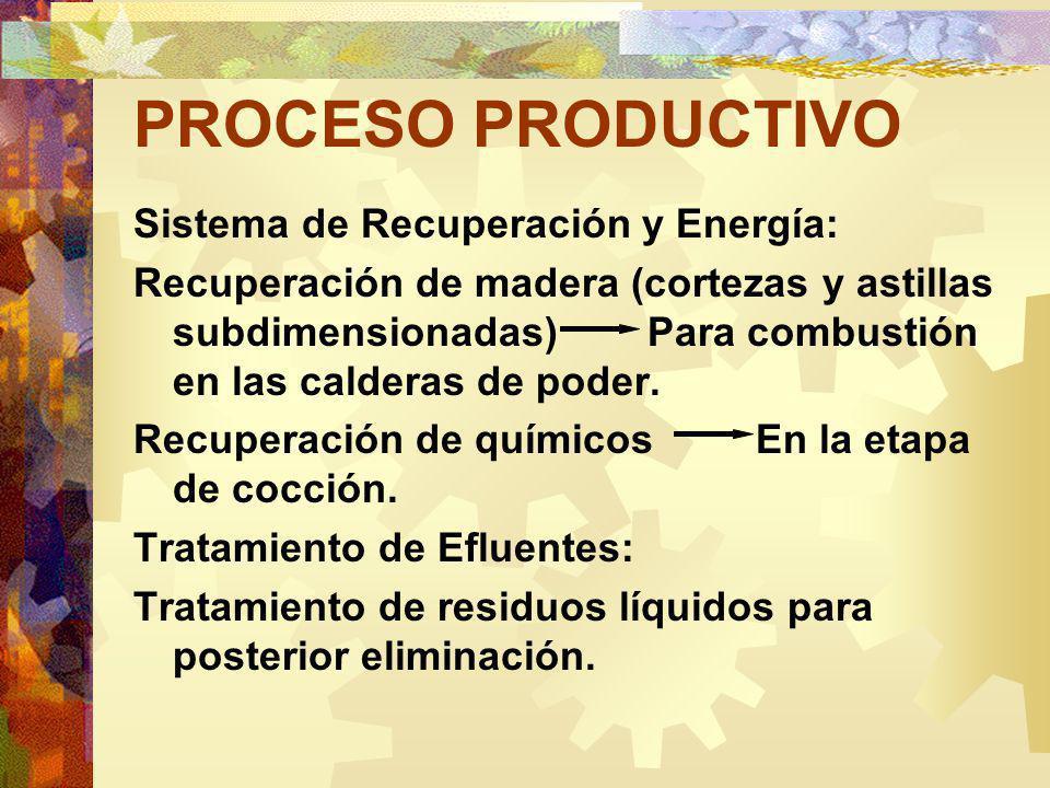 PROCESO PRODUCTIVO Sistema de Recuperación y Energía: Recuperación de madera (cortezas y astillas subdimensionadas) Para combustión en las calderas de poder.