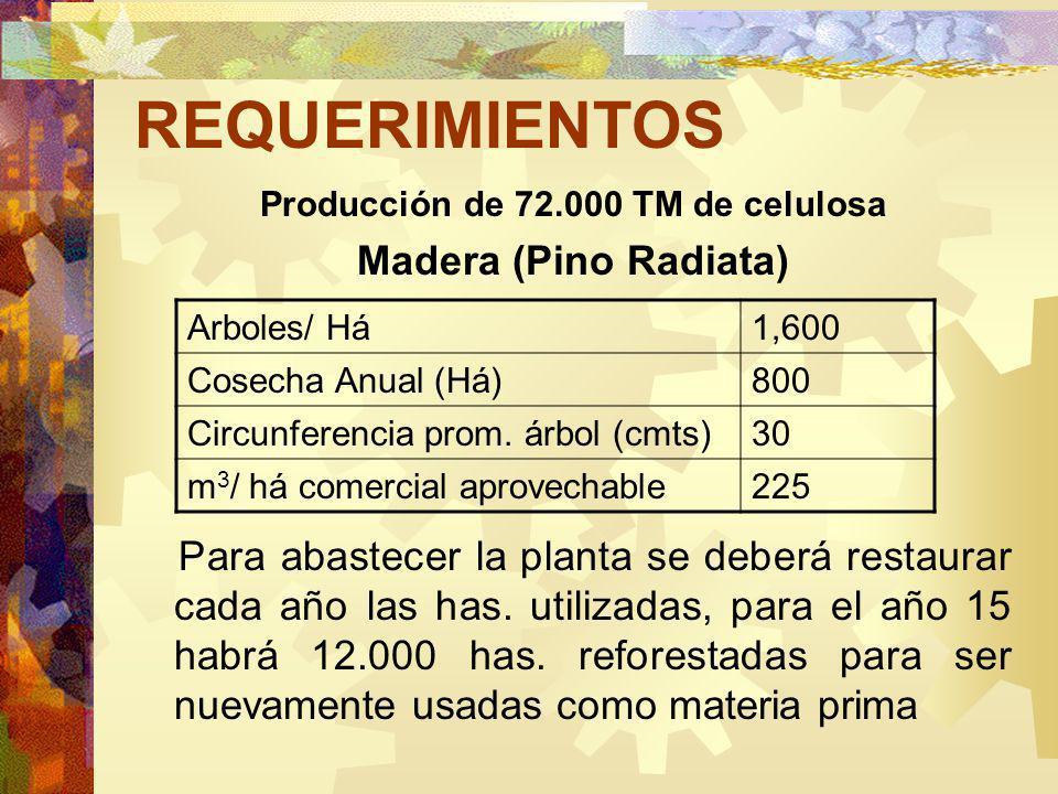 REQUERIMIENTOS Producción de 72.000 TM de celulosa Madera (Pino Radiata) Para abastecer la planta se deberá restaurar cada año las has.