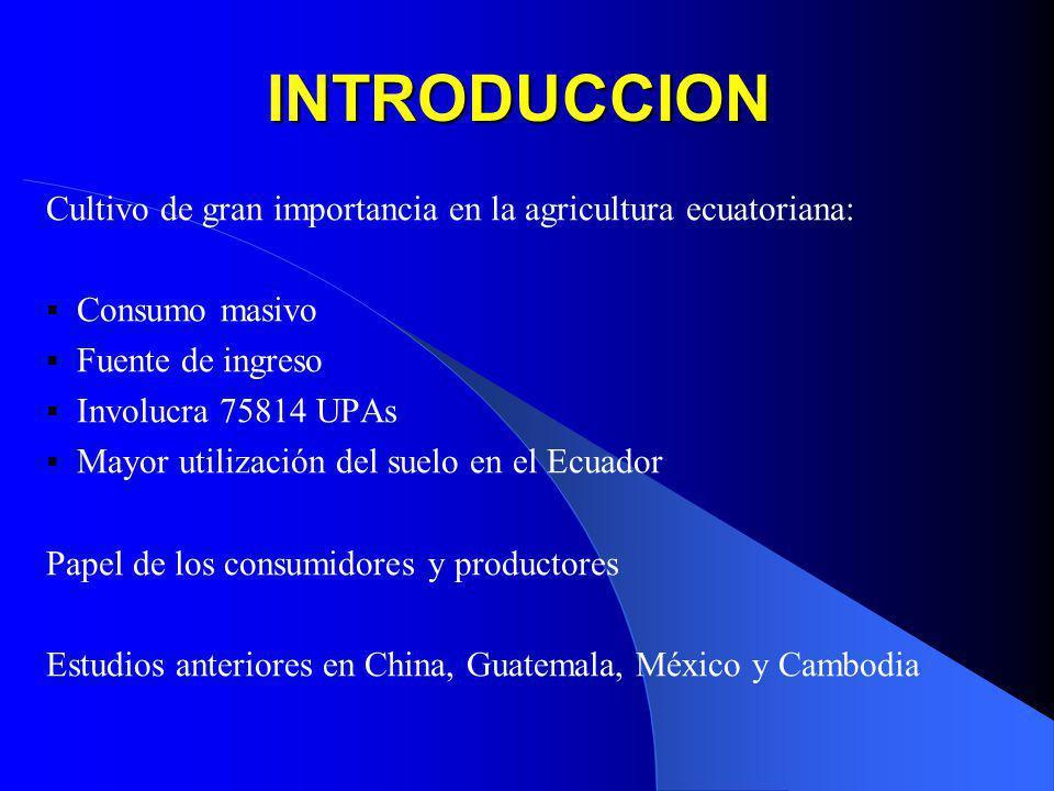 INTRODUCCION Cultivo de gran importancia en la agricultura ecuatoriana: Consumo masivo Fuente de ingreso Involucra 75814 UPAs Mayor utilización del su