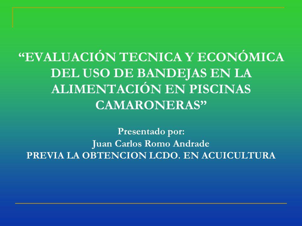 EVALUACIÓN TECNICA Y ECONÓMICA DEL USO DE BANDEJAS EN LA ALIMENTACIÓN EN PISCINAS CAMARONERAS Presentado por: Juan Carlos Romo Andrade PREVIA LA OBTENCION LCDO.