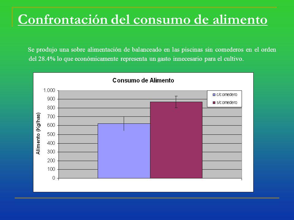 Confrontación del consumo de alimento Se produjo una sobre alimentación de balanceado en las piscinas sin comederos en el orden del 28.4% lo que económicamente representa un gasto innecesario para el cultivo.
