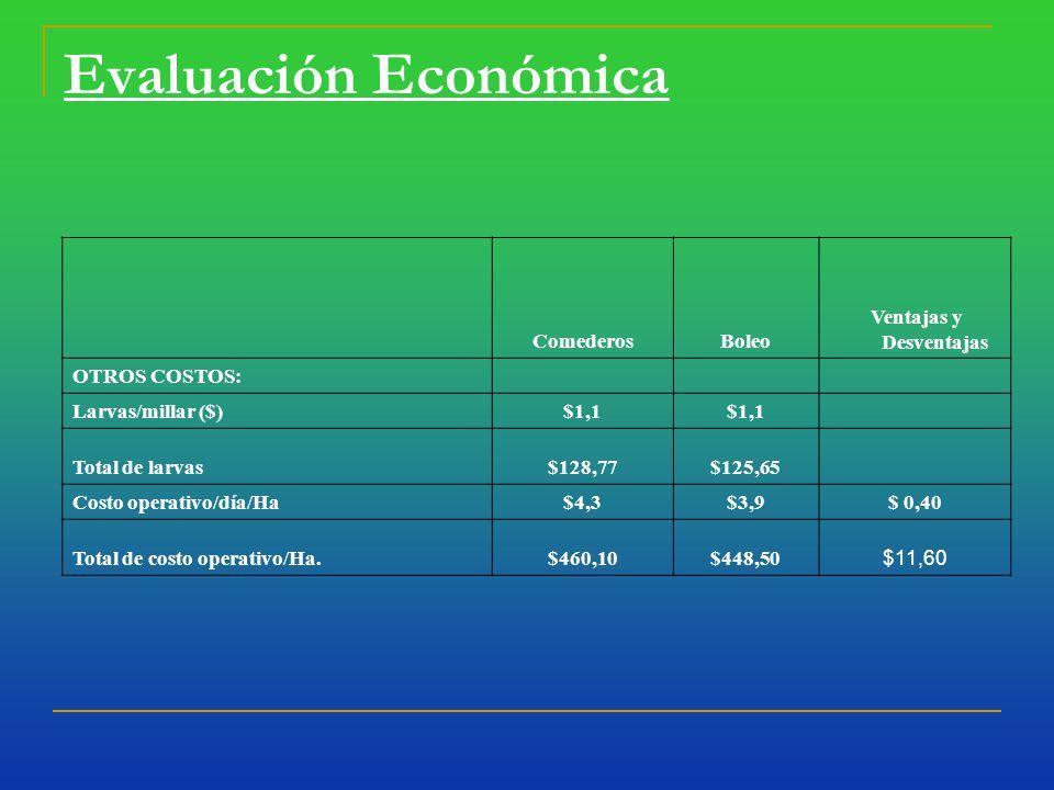 Evaluación Económica ComederosBoleo Ventajas y Desventajas OTROS COSTOS: Larvas/millar ($)$1,1 Total de larvas$128,77$125,65 Costo operativo/día/Ha$4,3$3,9$ 0,40 Total de costo operativo/Ha.$460,10$448,50 $11,60