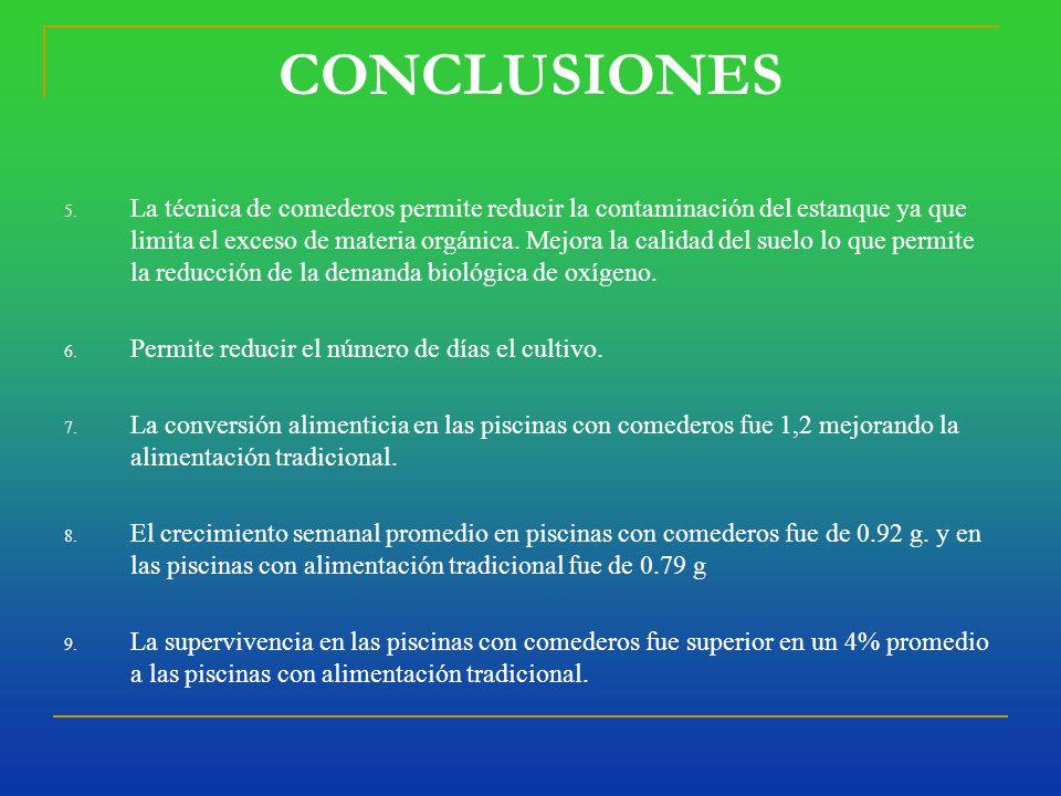CONCLUSIONES 5.