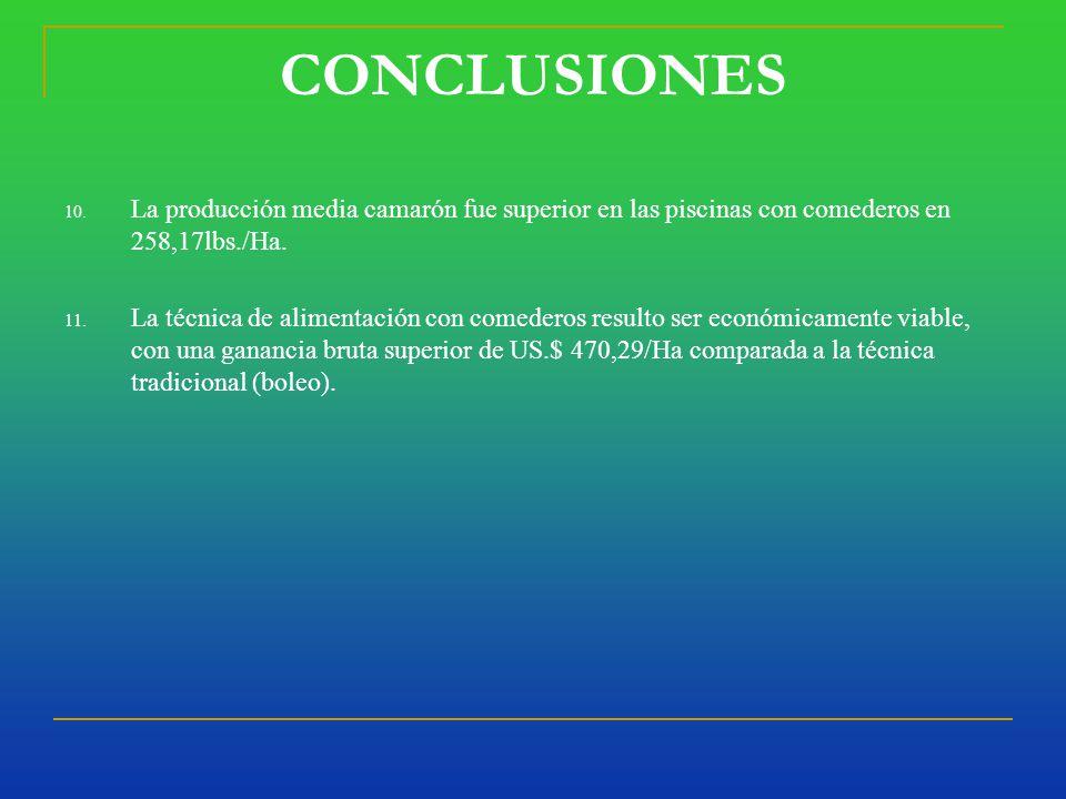 CONCLUSIONES 10.