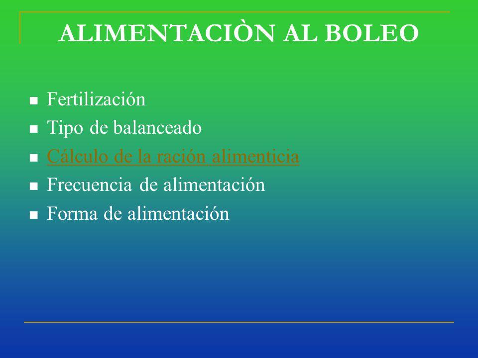 Forma de Alimentaciòn al Boleo