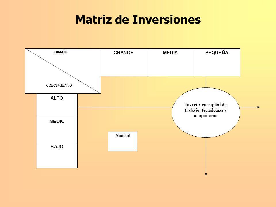 Matriz de Inversiones GRANDEMEDIAPEQUEÑA ALTO BAJO MEDIO TAMAÑO Invertir en capital de trabajo, tecnologías y maquinarias Mundial CRECIMIENTO